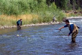 Pescuit la musca