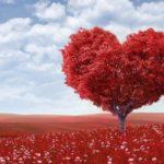 Am si eu inima…